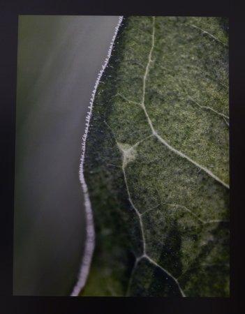Kép-Szin-Tér Fotóművészeti7