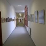 Gogol 9 Galéria